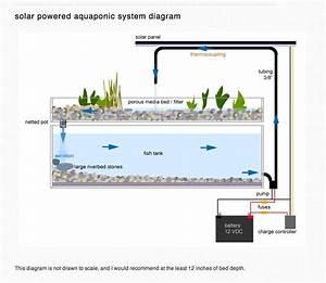 Solar Aquaponics Diagram
