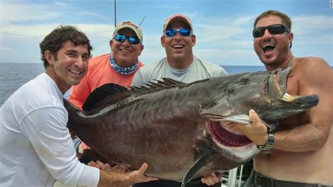 grouper fishing cnn largest catch