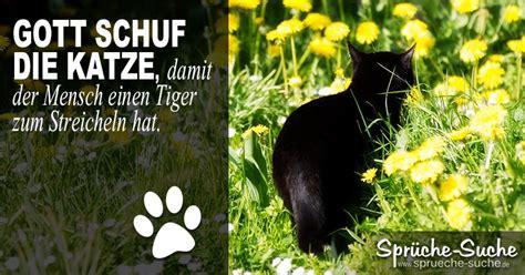 katze tiger spruch spr 252 che suche