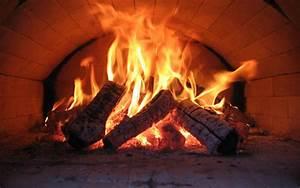 Feuer Den Ofen An : feuer fire oven ofen steinofen der lowe ~ Lizthompson.info Haus und Dekorationen