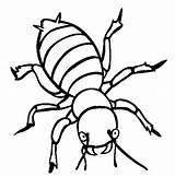 Coloring Pages Potato Angry Beetle Bugs Utilising Button Sheet Grab Feel Well Please sketch template