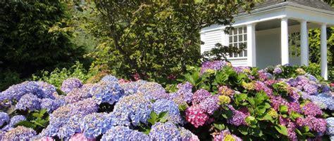 Gartengestaltung Mit Gartenhaus by Gartengestaltung Mit Gartenhaus Gabionen Gartengestaltung