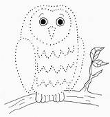 Dot Drawing Dots Dotted Drawings Easy Step Templates Swan Tree Bell Owl Coloring Owls Popular Samantha Archives Samanthasbell Coloringhome sketch template
