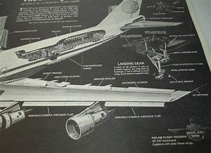 Pan Am Boeing 747 Cutaway Diagram Poster  Popular Mechanics