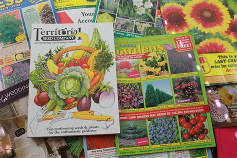 Free Seed And Plant Catalogs For Your Garden