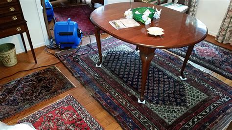 rug cleaning me carpet cleaning services squeaky clean