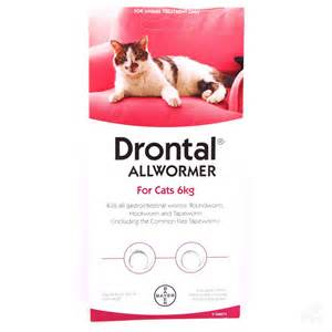 cat wormer drontal cat all wormer 6kg