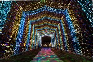 10, Best, Christmas, Light, Displays, In, Kansas