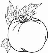 Vegetable Coloring Vegetables Pages Fruits Healthy Drawing Printable Pumpkin Fall Preschool Fruit Cool Line Foods Sheets Veggies Veggie Toddlers Getcoloringpages sketch template