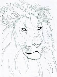 Lion Head by Lucy101 on DeviantArt