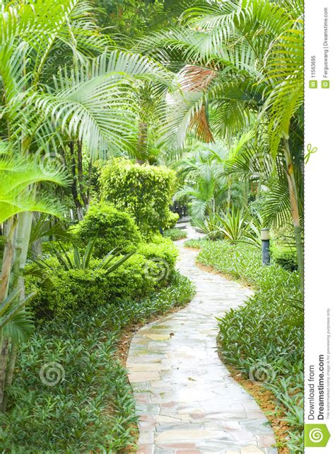 path  tropical garden stock image image  garden