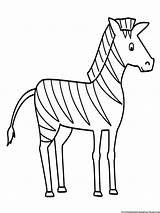 Zebra Coloring Drawing Pages Sketch Simple Line Animals Printable Easy Animal Zebras Colouring Drawings Sheets Step Outline Getdrawings Paintingvalley Sketches sketch template