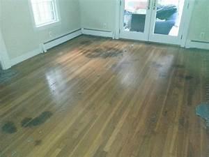 repairing hardwood floors pet stains floors doors With stains on hardwood floors from pets