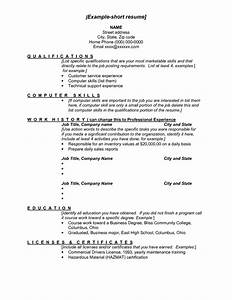 Best s of Examples A Short Resumes Short Sample