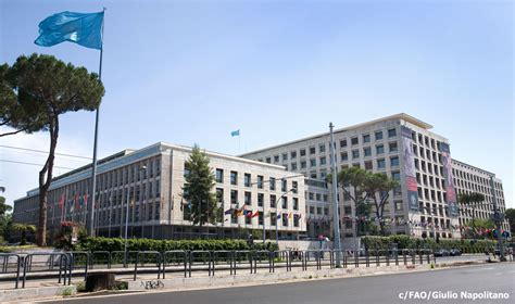 Fao Sede Roma by Un Security Management Italy United Nations In Italy
