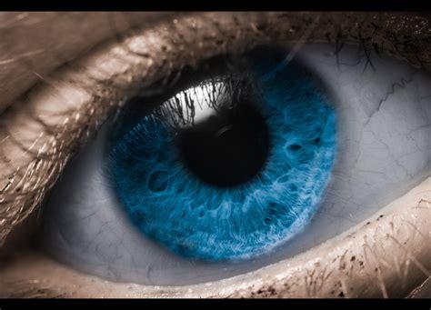 eye macro tips avidvisions