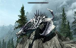 Flyable Dragon Races --Flying Mod at Skyrim Nexus - mods ...