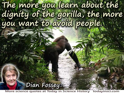 dian fossey quote  dignity   gorilla large image