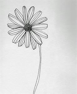 Daisy Flower Pencil Drawing   noel badges pugh photo ...