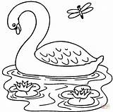 Coloring Swan Lake Pages Printable Popular sketch template