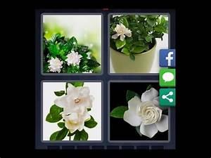 Pro Des Mots Niveau 295 : 4 images 1 mot niveau 943 hd iphone android ios youtube ~ Medecine-chirurgie-esthetiques.com Avis de Voitures
