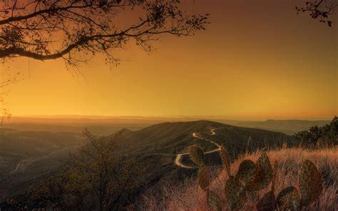 Photography Sunset Landscape Nature Trees Plants
