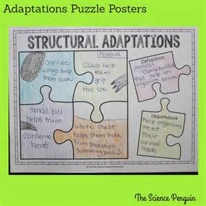 Science Animal Adaptations