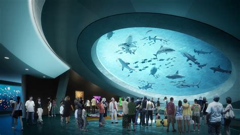 Longawaited Miami Science Museum Comes To Life  The New York Times