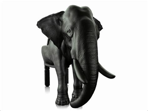 Â�コ・サイ・セイウチ・ゾウ・クジラをリアルに再現したイス「the Animal Chair Collection