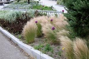 Plantes Et Jardin : un jardin dans le vent petit paysagiste ~ Melissatoandfro.com Idées de Décoration
