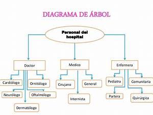 Diagrama De  U00e1rbol