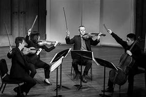 Avalon String Quartet | Chamber Music Ensemble