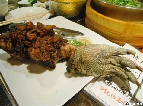 cuisine alligator comida japonesa que no gusta comer fotos de humor