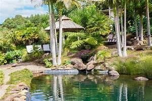 Palmen Für Draußen : palmen im tropischen garten in kerikeri neuseeland ~ Michelbontemps.com Haus und Dekorationen