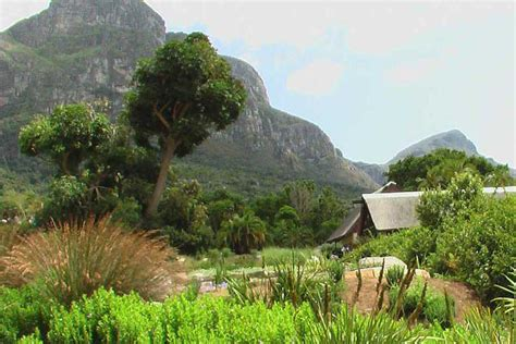 Botanischer Garten Kapstadt by Kirstenbosch Botanischer Garten Stadtgebiete Kapstadt