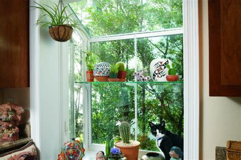 Window Garden Plants by Garden Windows Simonton Windows Doors