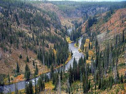 Lewis Canyon River Yellowstone Park National Wyoming