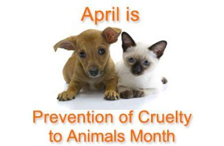 april  national prevention  animal cruelty month