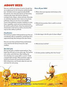 Bee Facts Worksheet