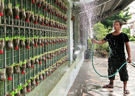 urban gardening  plastic bottles  fencing  grow