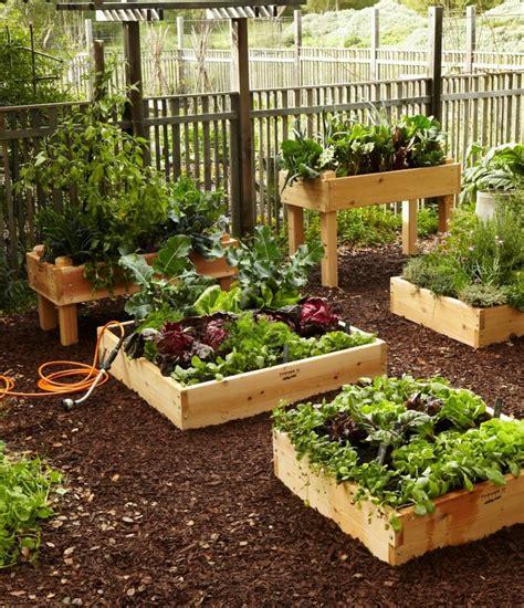 meuble a legumes pour cuisine des bac en bois pour le jardinage