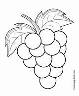 Coloring Pages Printable Grapes Fruits Vegetable Berries Apple Fruit Drawing Colouring Preschool Drawings Sheets Spring Books 4kids Kid sketch template