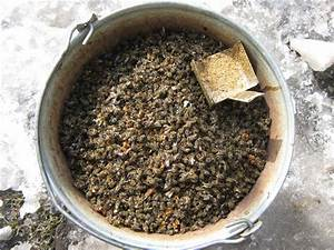 Настойка из подмора пчел для лечения аденомы