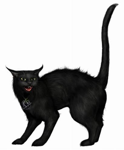 Cat Creepy Halloween Clip Clipart Transparent Drawing