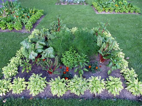 edible landscaping design eat your yard grow edible landscapes