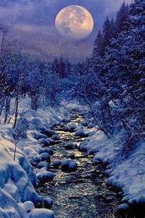 Résultat d'images pour un magnifique hiver