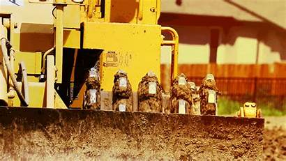 Abalone 1143 Construction Civil Infrastructure Industrial Earthworks