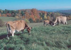 ATTRA | National Sustainable Agriculture Information ...