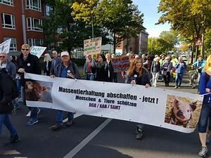 Zusammen Mit Samt Kreuzworträtsel : samt e v vereinsnews molly samtpfote ~ A.2002-acura-tl-radio.info Haus und Dekorationen