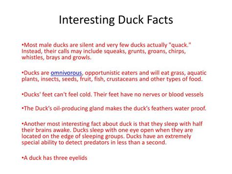 duck facts ppt interesting duck facts powerpoint presentation id 2521026